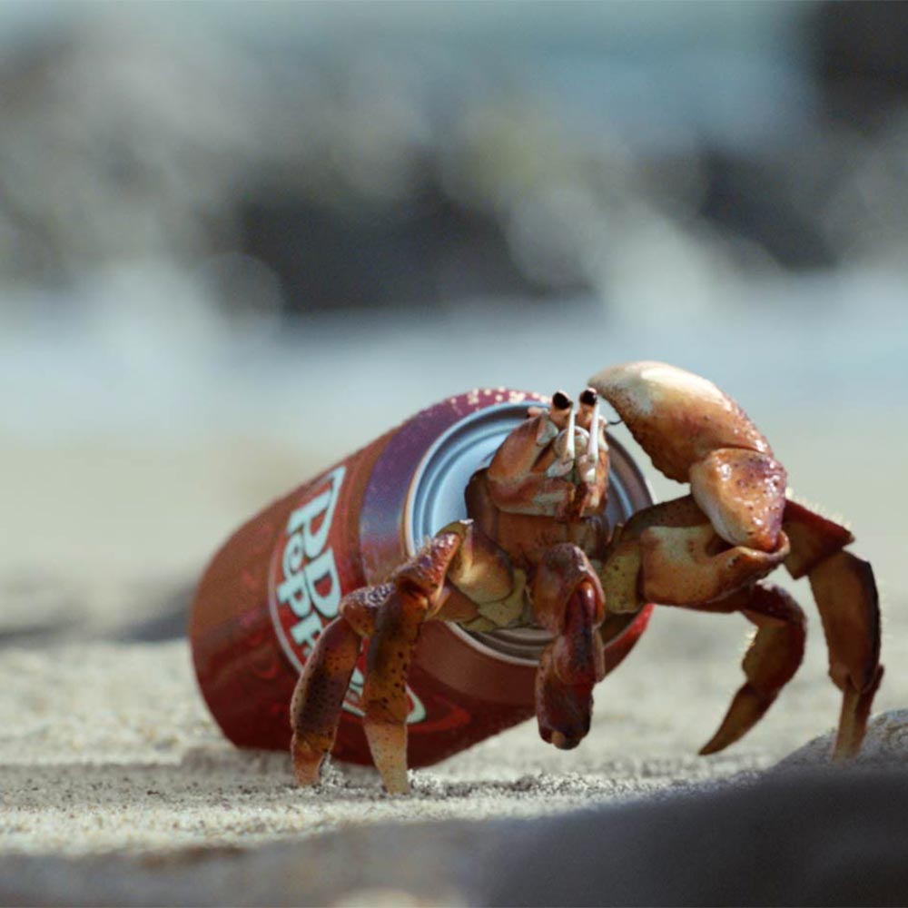 dr-pepper-crab-1k